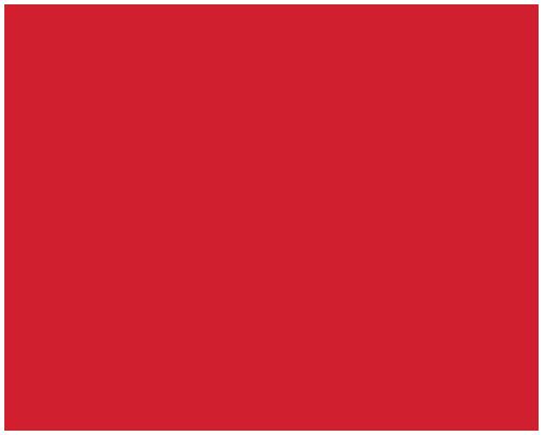 Aunty Devi's Meat Pies